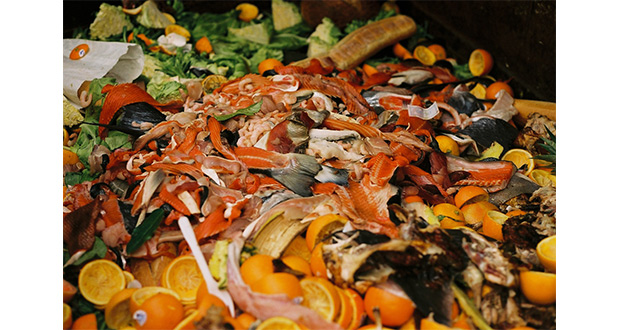 ", ""Cut Meat, Plastic And Waste"" As Part Of The Tastiest Challenge On The Planet"