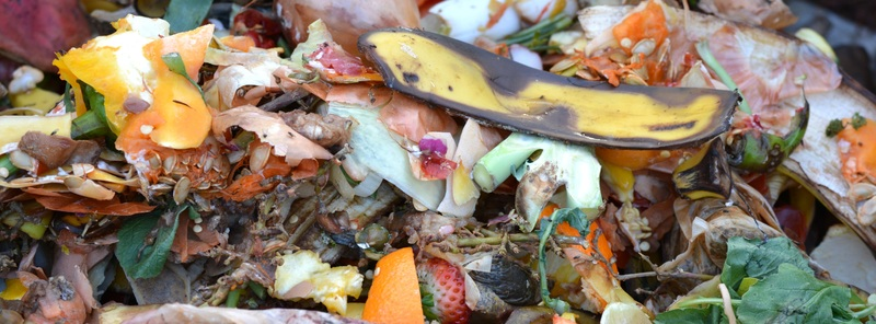 Greene King Signs Up to Two National Pledges to Reduce its Food Waste