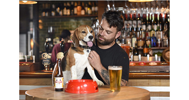 , Rover Launches 2019 Dog-Friendly Pub Awards